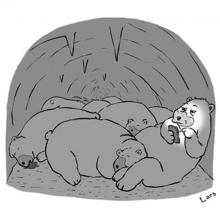 Коты анимация, в спячке смешные картинки