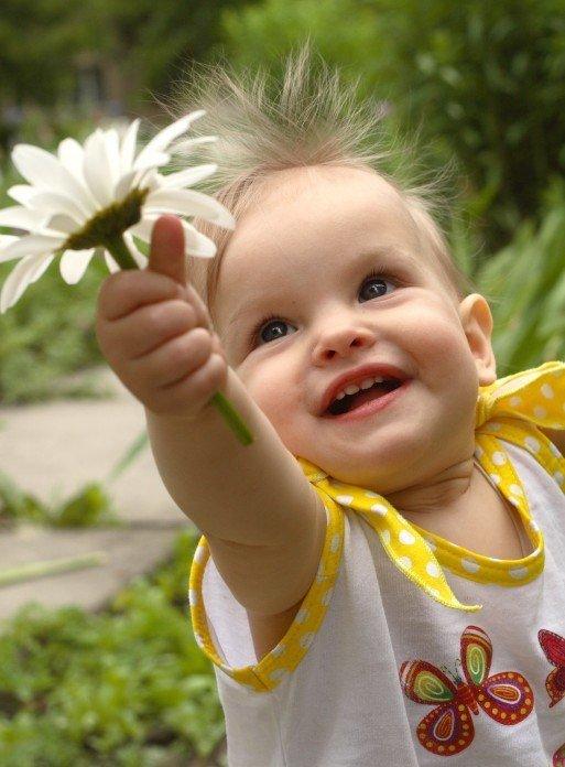 Добрые фото картинки настроение соннике