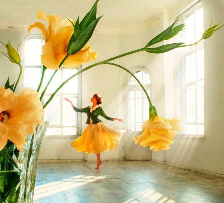Розы, цветы заказ танцев