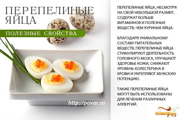 сколько можно есть перепелиных яиц сможете узнать самые