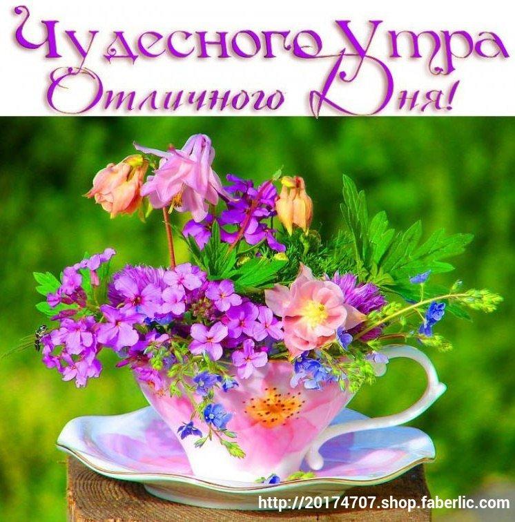 Изображением ангелов, картинки с надписью чудесного дня с цветами